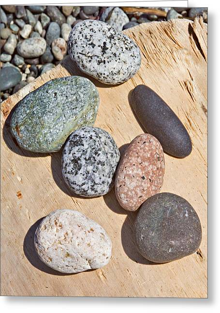 Seven Stones On A Log Greeting Card
