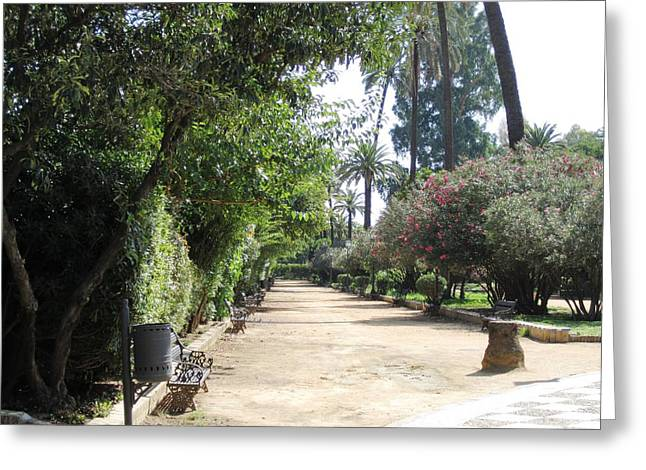 Seville Garden Pathway Iv Spain Greeting Card