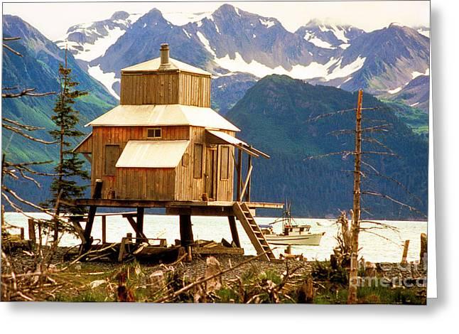Seward Alaska House Of Stilts Greeting Card by James BO  Insogna
