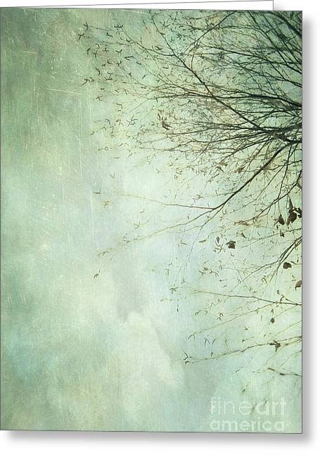 Limbs Of A Tree 2 Greeting Card by Priska Wettstein