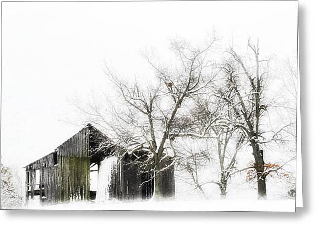Shabby Barn Greeting Card by Kathy Jennings