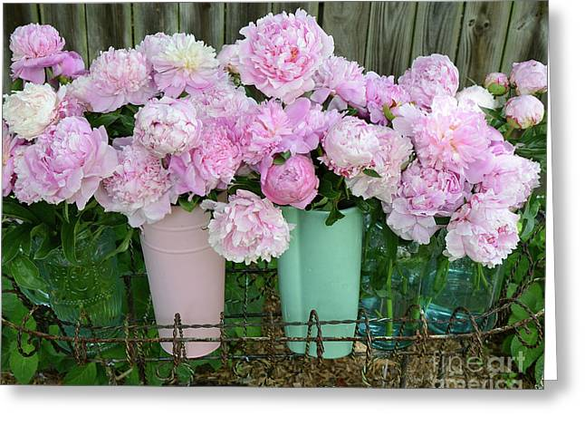 Shabby Chic Pink Peonies In Pink Aqua Buckets - Cottage Garden Pink Peony Prints Home Decor  Greeting Card by Kathy Fornal