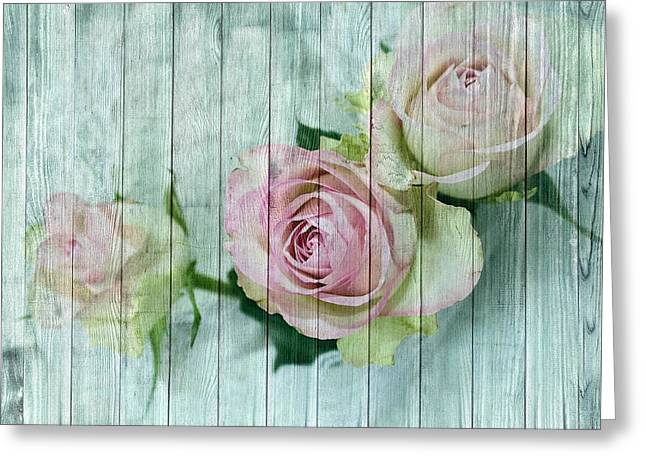 Shabby Chic Pink Roses On Blue Wood Greeting Card