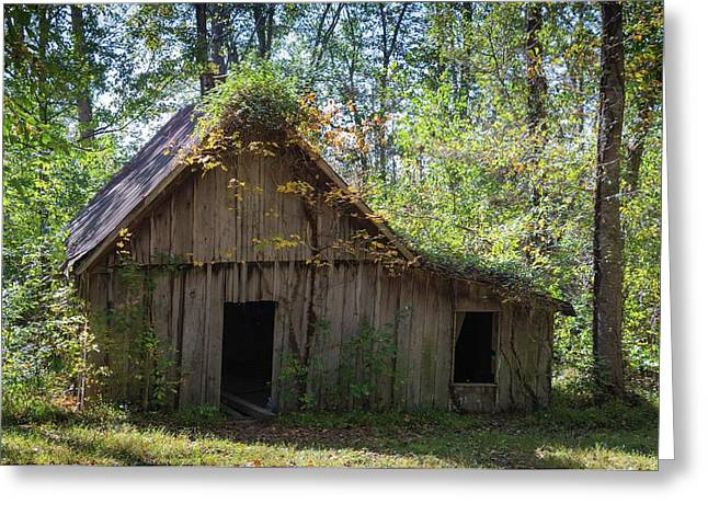 Shack In The Woods Greeting Card