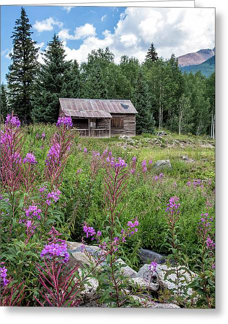 Shack With Fireweed Greeting Card