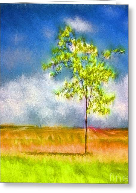 Shade Greeting Card by Jean OKeeffe Macro Abundance Art