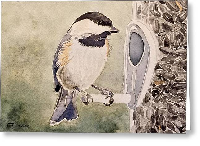 Shades Of Black Capped Chickadee Greeting Card