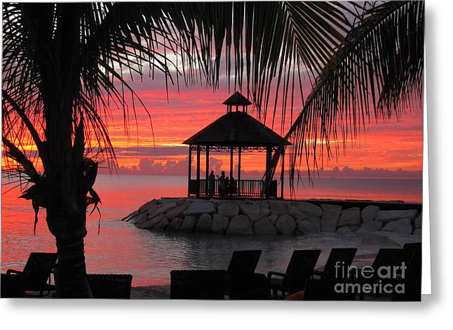 Shades Of Paradise 2 Greeting Card by Addie Hocynec
