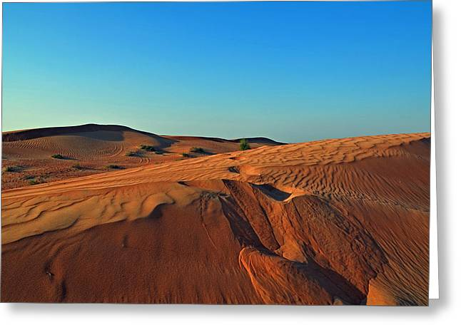 Shades Of Sand Greeting Card