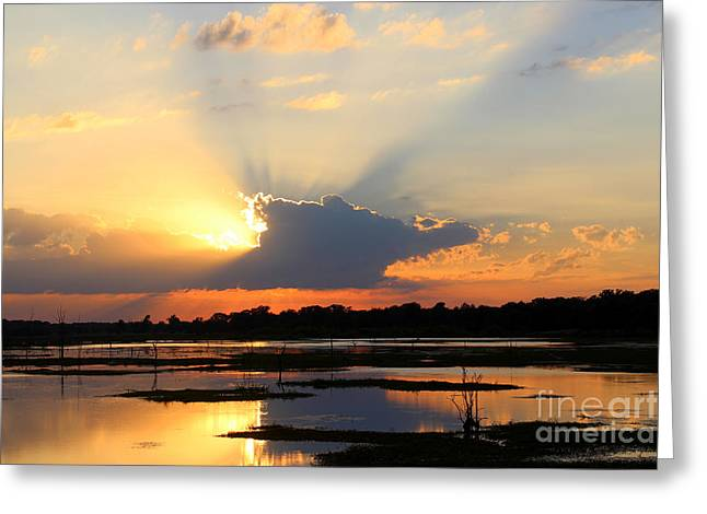 Shades Of Sunsets Greeting Card by Kathy  White