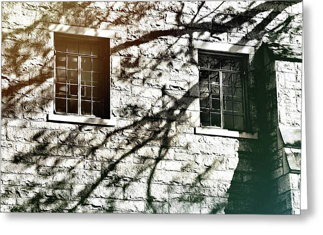 Shadow Days Greeting Card by JAMART Photography