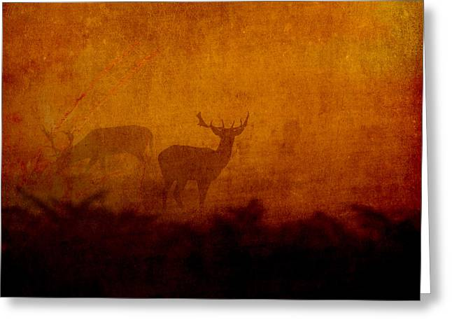 Shadow Deer Greeting Card by Sarah Vernon