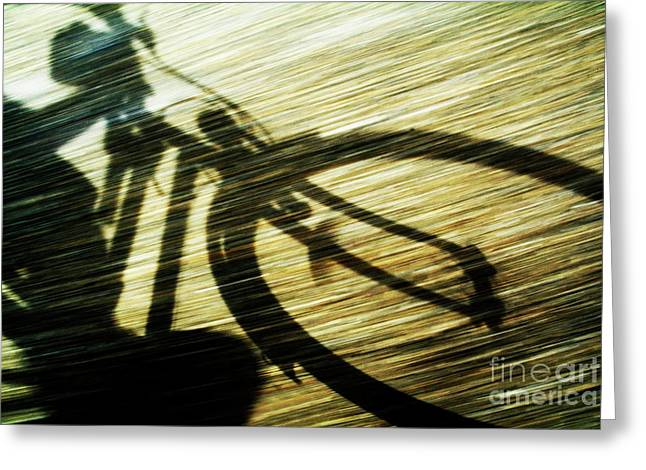 Shadow Of A Person Riding A Bicycle Greeting Card by Sami Sarkis