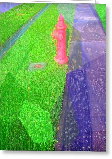 Shadow Of A Woman And Dog Greeting Card by Fania Simon