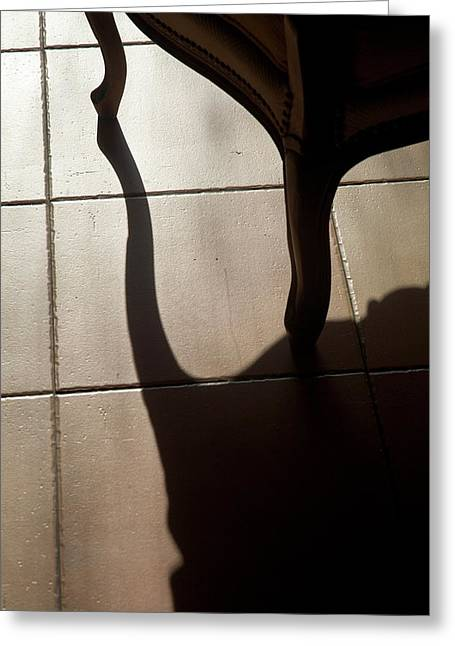 Shadow Of An Armchair On A Tiled Floor Greeting Card by Sami Sarkis