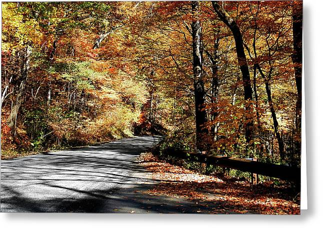 Shadows On The Road Greeting Card