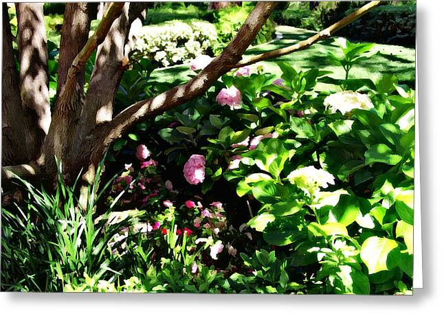 Greeting Card featuring the photograph Shadows Through The Garden by Glenn McCarthy Art and Photography