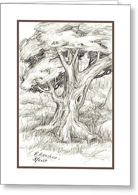 Shady Tree Greeting Card by Ruth Renshaw