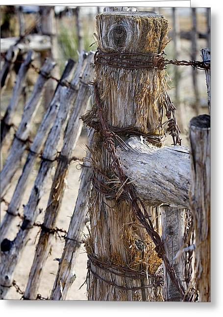 Greeting Card featuring the photograph Shaggy Fence Post by Phyllis Denton