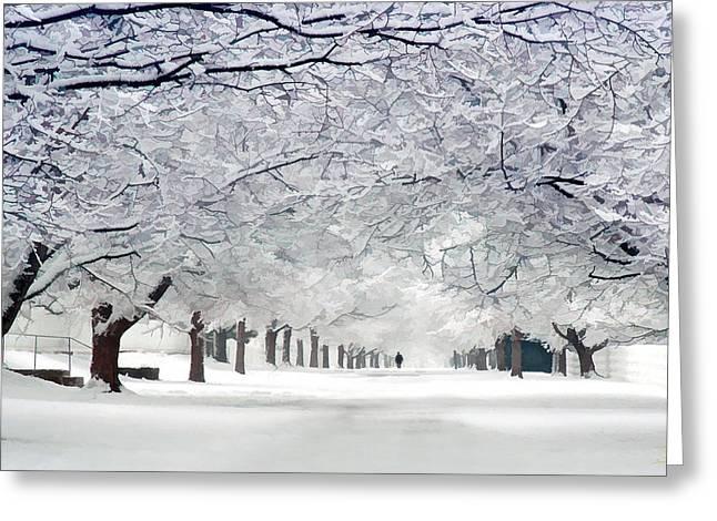 Shaker Winter Walkway Greeting Card