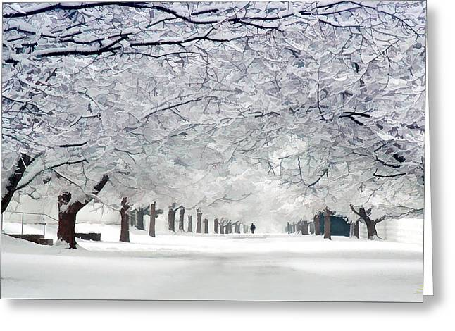 Shaker Winter Walkway Greeting Card