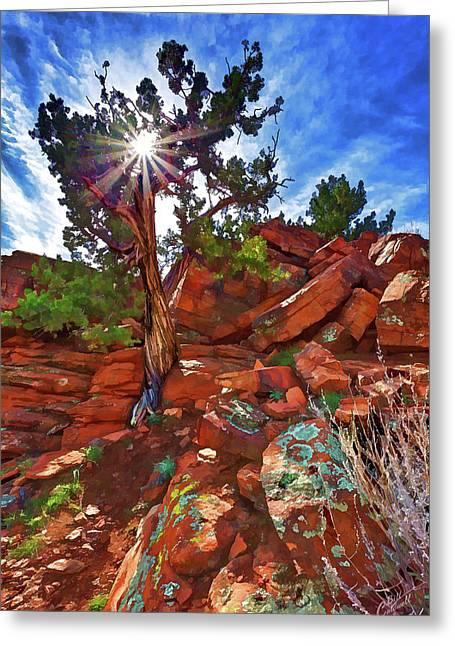 Shaman's Dome Juniper Greeting Card