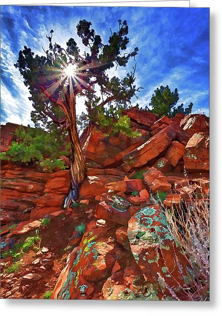 Greeting Card featuring the photograph Shaman's Dome Juniper by ABeautifulSky Photography