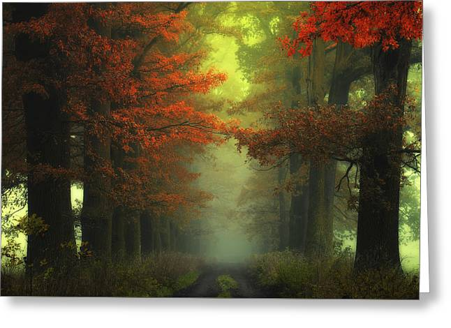 Shaman's Road On The Other Side Greeting Card by Janek Sedlar