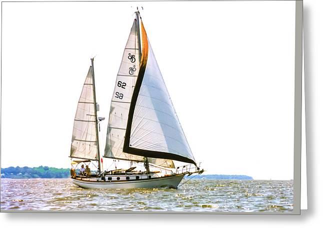 Shannon 38 Kittiwake On Chesapeake Bay Greeting Card