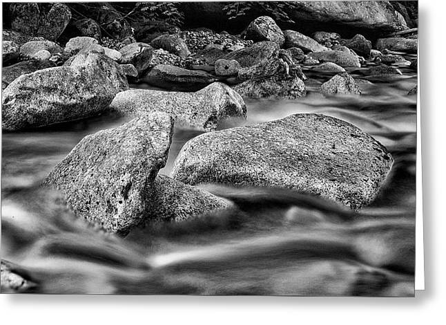 Shannon Creek -bw Greeting Card by Stephen Stookey
