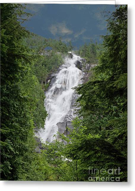 Greeting Card featuring the photograph Shannon Falls by Rod Wiens