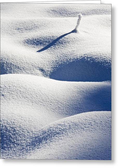 Shapes Of Winter Greeting Card by Mike  Dawson