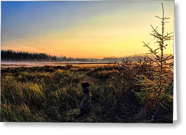 Sharing A September Sunrise With A Retriever Greeting Card