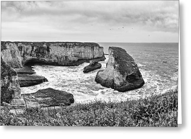 Shark Fin Cove Panorama Greeting Card by Jamie Pham