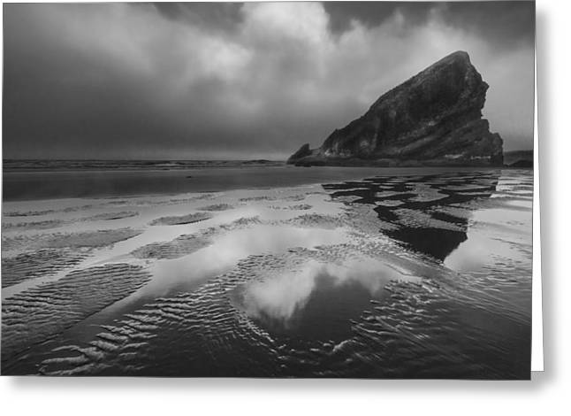 Shark Fin In Black And White Greeting Card