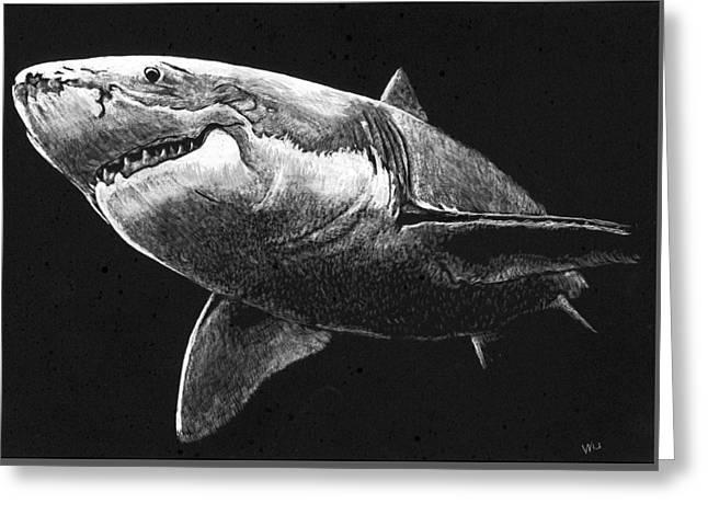 Shark Greeting Card