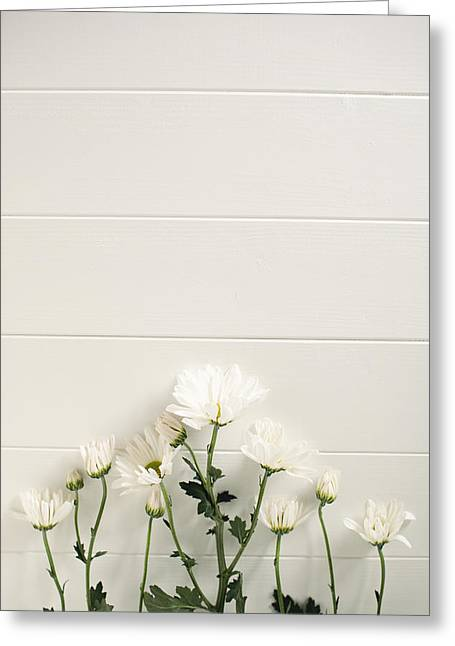 Shasta Daisies Cropped 2 Greeting Card