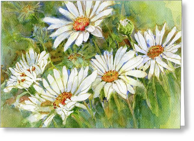Shasta Daisies Greeting Card