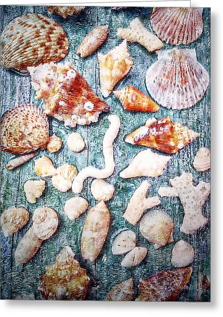 She Sells Sea Shells... Greeting Card by Barbara Chichester