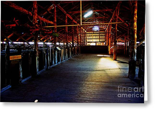 Shearing Shed From A Bygone Era Greeting Card by Blair Stuart