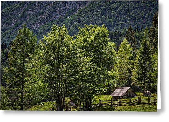 Greeting Card featuring the photograph Shed In The Slovenian Alps by Stuart Litoff