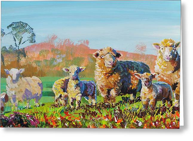 Sheep And Lambs In Devon Landscape Bright Colors Greeting Card