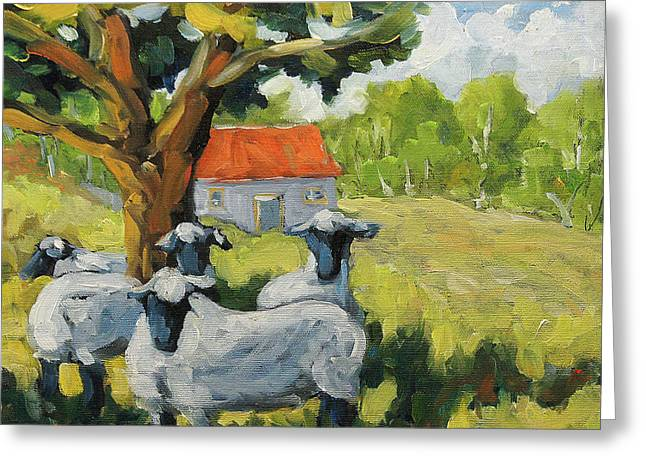 Sheep And Shade Greeting Card by Richard T Pranke
