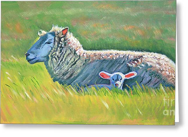 Sheep At Red Hill Farms Greeting Card by Colleen Proppe