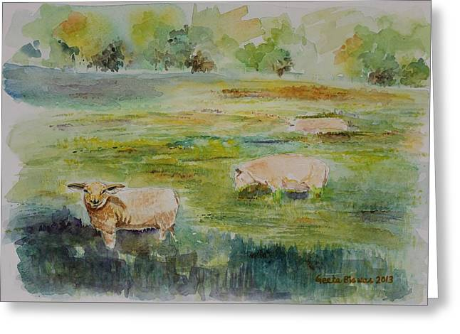 Sheep In Pasture Greeting Card