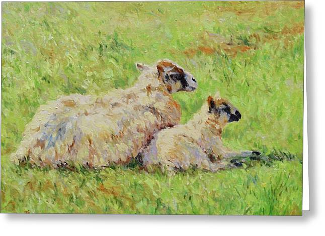 Sheep In The Spring Time,la Vie Est Belle Greeting Card