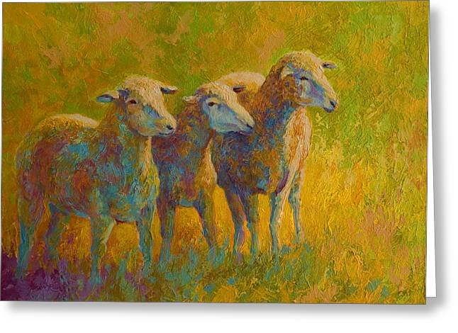 Sheep Trio Greeting Card
