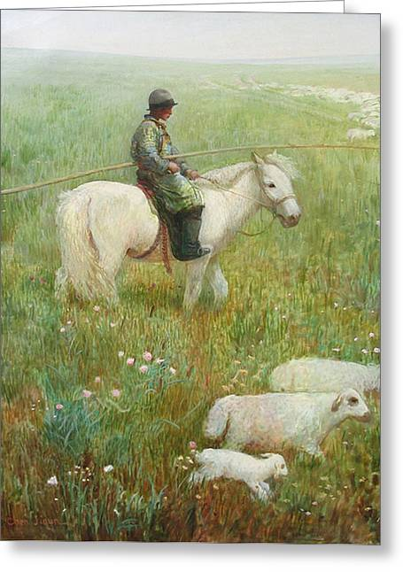Sheepherder Greeting Card