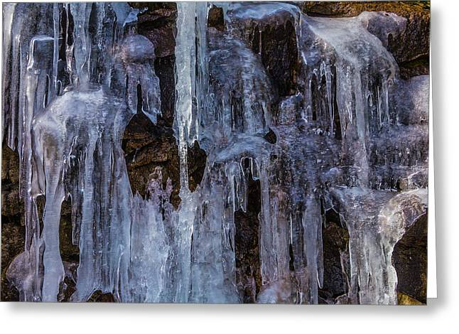 Sheets Of Icicles Greeting Card by Garry Gay
