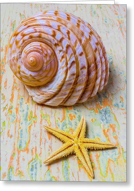 Shell And Starfish Greeting Card by Garry Gay